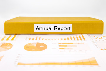 Business annual report, graphs, charts and project evaluation do