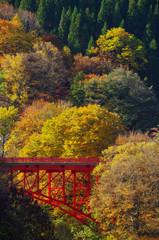 松川渓谷 赤い橋と紅葉