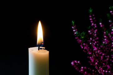 Burning candle in front of heather flower