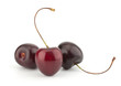 Sweet Cherry isolated on white background