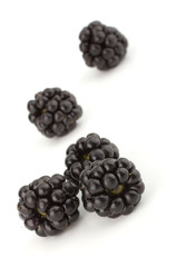 Blachberry isolated on white background closeup