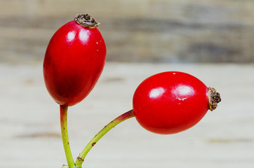 Two rosehips