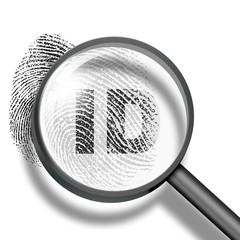 fingerprint identification concept