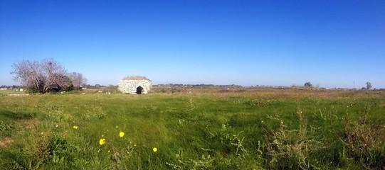 Salento landscape