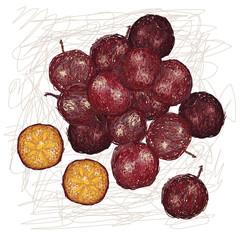 ramontchi fruit