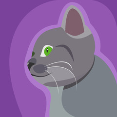 Grey cat icon