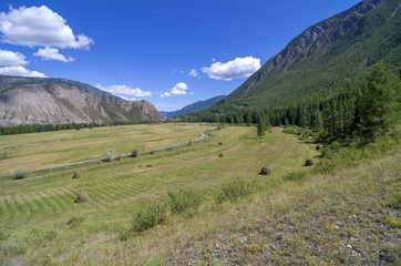 Meadow with haystacks in the mountains. Altai, Russia.