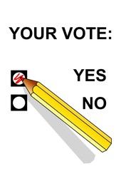 Vote yes on a ballot paper