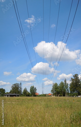 Meadow and overhead power line