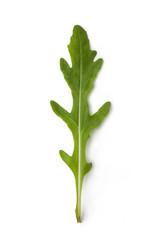 Fresh arugula isolated on white background