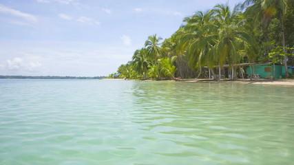 Starfish beach on the archipelago Bocas del Toro