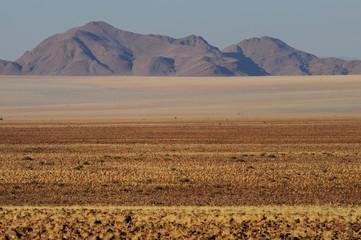 Namib-Rand-Gebiet