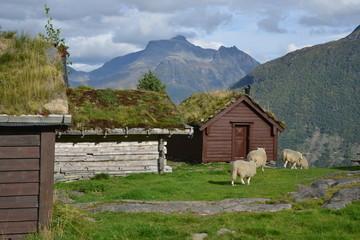 Berghütten Nordfjord Norwegen, Scalaberg