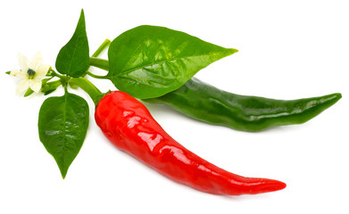 Red and green hot peppers with leaf