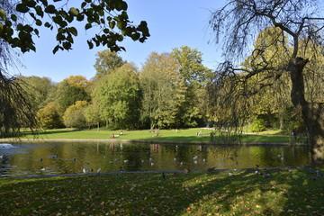 L'étang aux canards du parc de Jette en automne