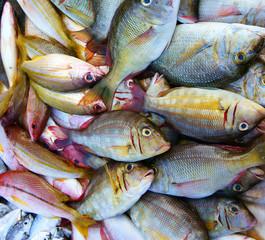 Fresh seafood, Vietnam fish market, nutrition food