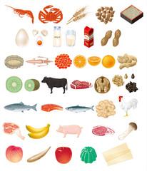 食品 食材
