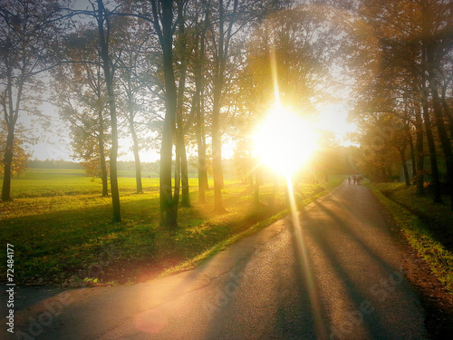 canvas print picture Sonne im Herbst