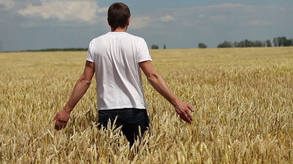 farmer raises his hands up in wheat field