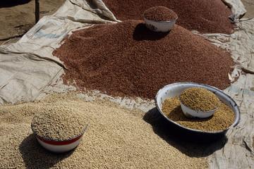 miglio cereali alimentazione mercato di pous lago maga camerun