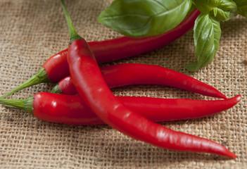 basilic et piments rouge