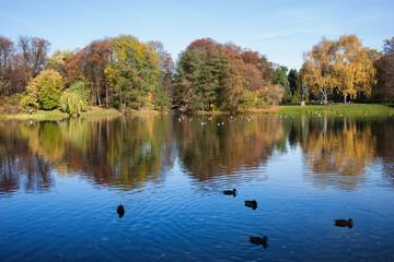 Autumn at Skaryszewski Park in Warsaw