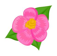 Pink Daisy Vector Element