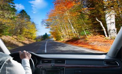 Driver in car.  asphalt road