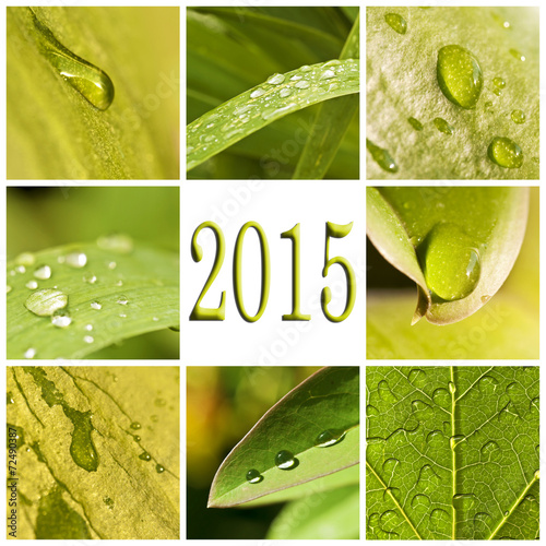 2015, green leaves and raindrops photo collage © Delphotostock