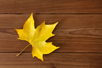 dry autumn leaves over natural wood background
