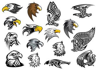 Cartoon eagle, falcon and hawk heads