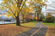 Fall Colous in a Park