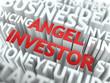 Angel Investor  - Wordcloud Concept.