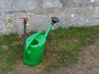 A green watering can in a garden
