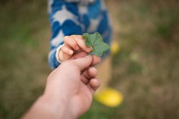 葉を手渡す親子