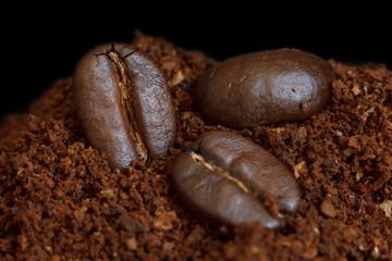 Three roasted coffee beans on ground coffee. Black background.