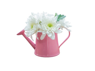 White bouquet flowers in watering can isolated