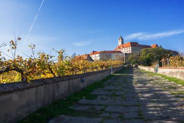 Burganlage mit Weinanbau