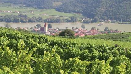 Wachau - 016 - Weissenkirchen