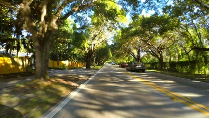 Driving on a shady road