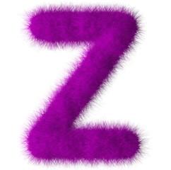 Purple shag Z letter isolated on white background