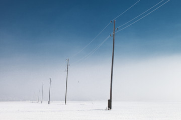 Electricity line in winter.