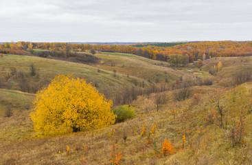 Autumnal rural landscape in central Ukraine