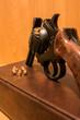canvas print picture - Schußwaffe mit Patronen