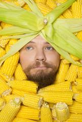portrait close up of men  in of corn cobs