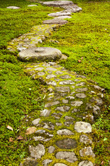 Garden path paved with big stones