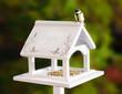 weißes Vogelhaus mit Kohlmeise