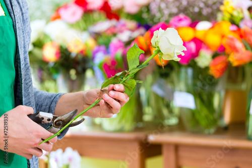 Florist arbeitet im Blumenladen mit Blumen - 72519330