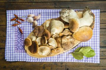 Variedad de setas e ingredientes y especias para su cocina