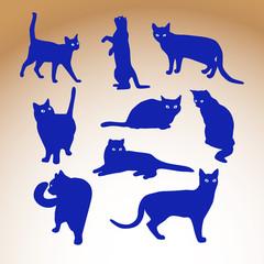 Cat silluette illustration